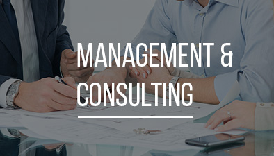 Management and consultancy services